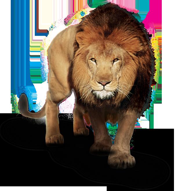 Leão Sistema Anglo